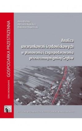 Analiza uwarunkowań środowiskowych w planowaniu i zagospodarowaniu przestrzennym gminy Cegłów - Anna Bielska - Ebook - 978-83-7814-290-4