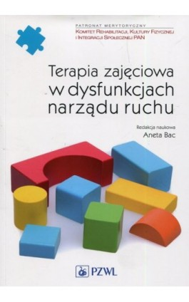 Terapia zajęciowa w dysfunkcjach narządu ruchu - Aneta Bac - Ebook - 978-83-200-5503-0