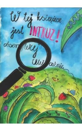 W tej książce jest intruz - obserwuj uważnie - Piotr Brzezinski - Ebook - 978-83-931309-1-7
