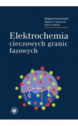 Elektrochemia cieczowych granic fazowych - Zbigniew Koczorowski - Ebook - 978-83-235-1005-5