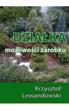 Działka. Możliwości zarobku - Krzysztof Lewandowski - Ebook - 978-83-7859-456-7