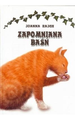 Zapomniana baśń - Joanna Rajch - Ebook - 978-83-64894-20-6