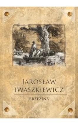 Brzezina - Jarosław Iwaszkiewicz - Ebook - 978-83-7699-188-7