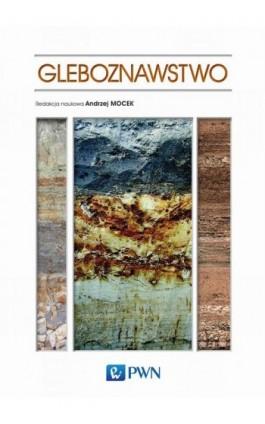 Gleboznawstwo - Ebook - 978-83-01-18795-8