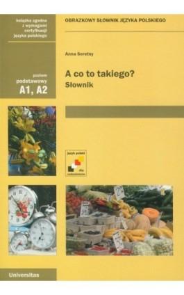 A co to takiego? Słownik - Anna Seretny - Ebook - 978-83-242-1105-0