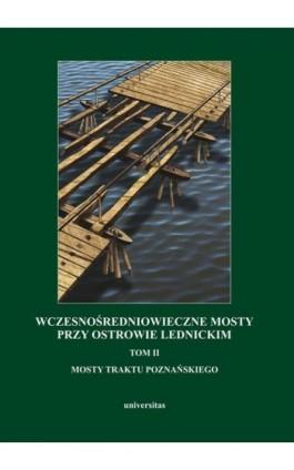 Wczesnośredniowieczne mosty przy Ostrowie Lednickim - Ebook - 978-83-242-2556-9