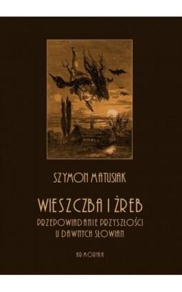 Wieszczba i żreb. Przepowiadanie przyszłości u dawnych Słowian - Szymon Matusiak - Ebook - 978-83-8064-388-8