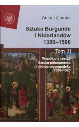 Sztuka Burgundii i Niderlandów 1380-1500. Tom 3 - Antoni Ziemba - Ebook - 978-83-235-1623-1