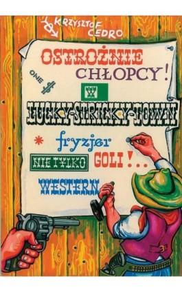 Ostrożnie chłopcy - Krzysztof Cedro - Ebook - 978-83-7803-004-1