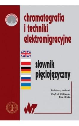 Chromatografia i techniki elektromigracyjne - Ebook - 978-83-011-8718-7