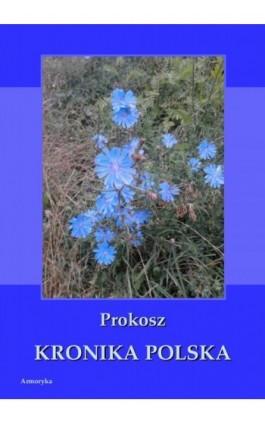 Kronika polska Prokosza - Prokosz - Ebook - 978-83-8064-121-1