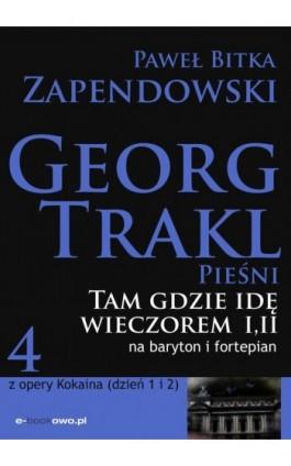 Tam gdzie idę wieczorem - Paweł Bitka Zapendowski - Ebook - 978-83-62480-25-8