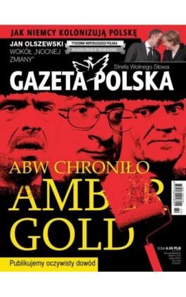 Gazeta Polska 31/05/2017 - Ebook
