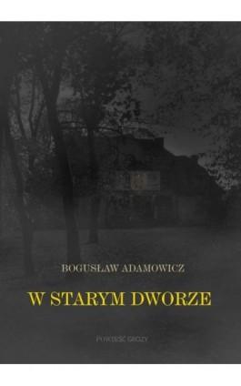 W starym dworze. Powieść fantastyczna - Bogusław Adamowicz - Ebook - 978-83-66070-11-0