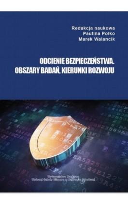 Odcienie bezpieczeństwa. Obszary badań, kierunki rozwoju - Ebook - 978-83-65621-07-8