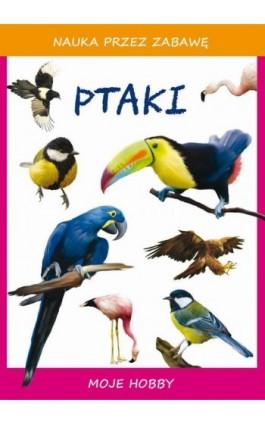 Ptaki - Beata Guzowska - Ebook - 978-83-8114-747-7