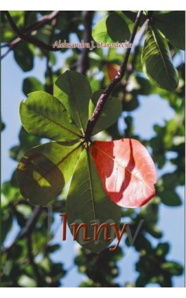 Inny - Aleksandra J. Starostecka - Ebook - 978-83-8119-161-6