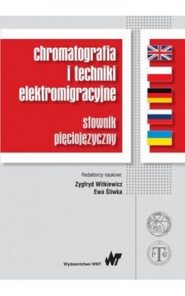 Chromatografia i techniki elektromigracyjne - Ebook - 978-83-01-18718-7