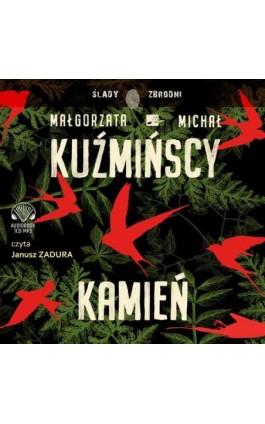 Kamień - Małgorzata I Michał Kuźmińscy - Audiobook - 9788366155527