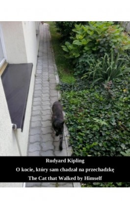O kocie, który sam chadzał na przechadzkę. The Cat that Walked by Himself - Rudyard Kipling - Ebook - 978-83-7950-771-9