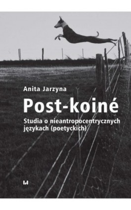 Post-koiné - Anita Jarzyna - Ebook - 978-83-8142-427-1