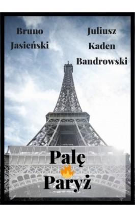 Palę Paryż - Bruno Jasieński - Ebook - 978-83-8119-487-7