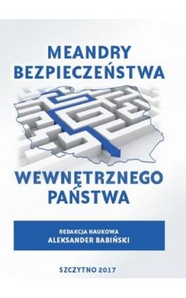 Meandry bezpieczeństwa wewnętrznego państwa - Ebook - 978-83-7462-561-6
