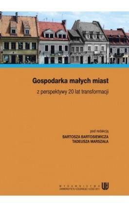 Gospodarka małych miast z perspektywy 20 lat transformacji - Ebook - 978-83-7525-583-6