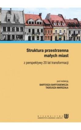 Struktura przestrzenna małych miast z perspektywy 20 lat transformacji - Ebook - 978-83-7525-560-7