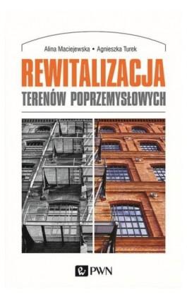 Rewitalizacja terenów poprzemysłowych - Alina Maciejewska - Ebook - 978-83-01-20697-0