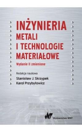 Inżynieria metali i technologie materiałowe - Ebook - 978-83-01-20648-2