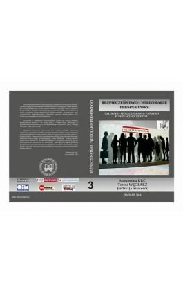 CZŁOWIEK – SPOŁECZEŃSTWO – PAŃSTWO W SYTUACJACH KRYZYSU t.3. - Ebook - 978-83-61304-78-4