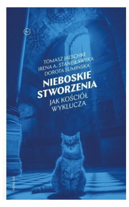 Nieboskie stworzenia - Dorota Sumińska - Ebook - 978-83-66232-37-2