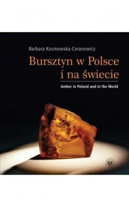 Bursztyn w Polsce i na świecie. Amber in Poland and in the World - Barbara Kosmowska-Ceranowicz - Ebook - 978-83-235-1022-2