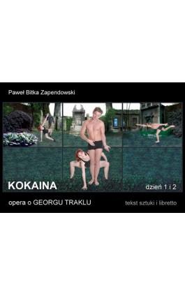 Kokaina - Paweł Bitka Zapendowski - Ebook - 978-83-61184-86-7