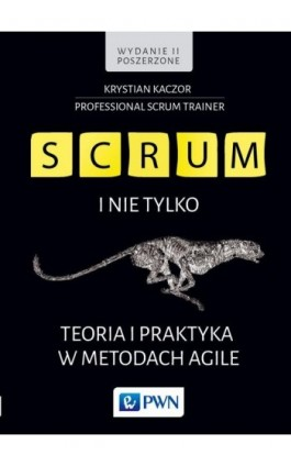 SCRUM i nie tylko.Teoria i praktyka w metodach Agile - Krystian Kaczor - Ebook - 978-83-01-19256-3