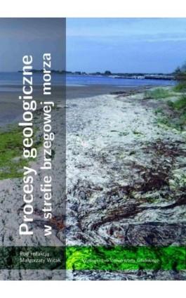 Procesy geologiczne w strefie brzegowej morza - Ebook - 978-83-7865-284-7