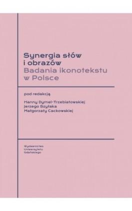 Synergia słów i obrazów. Badania ikonotekstu w Polsce - Ebook - 978-83-8206-192-5