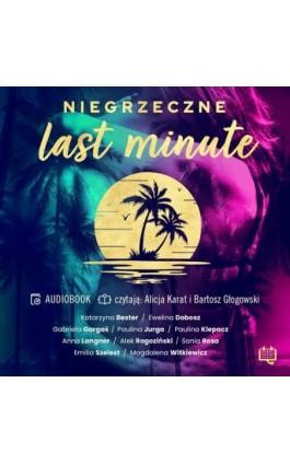 Niegrzeczne last minute - Alek Rogoziński - Audiobook - 978-83-66890-96-1