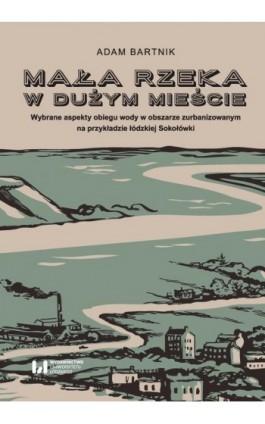 Mała rzeka w dużym mieście - Adam Bartnik - Ebook - 978-83-8088-641-4