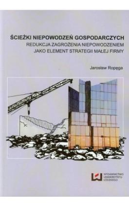 Ścieżki niepowodzeń gospodarczych - Jarosław Ropęga - Ebook - 978-83-7969-600-0