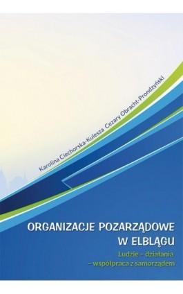 Organizacje pozarządowe w Elblągu - Karolina Ciechorska-Kulesza - Ebook